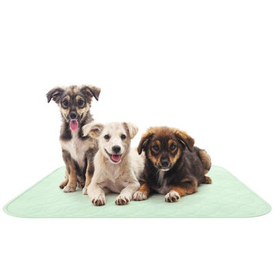 Trademark Global Games Puppy Pads Pet Training Mat- Quick Absorb, Waterproof, Machine Washable, Reusable- Dog Housebreaking, Training, Crate Supplies, 34â x 36â By PETMAKER