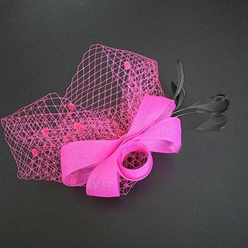 dds5391 Ladies Retro Elegant Feather Fascinator Hair Clip Hat Wedding Cocktail Mesh Net Veil Headband