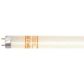SHAT-R-SHIELD 22178 Fluorescent Tube,4 ft,28W,T8,3500K,PK30 G7098686