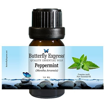 Peppermint (Mentha arvensis) Essential Oil 10ml - 100% Pure - by Butterfly Express