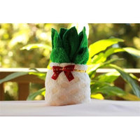 Couture Towel CT-HGPA001201 Pineapple Towel Pale Yellow & Green