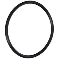 Gli Pool Products 154004 O-Ring Parker