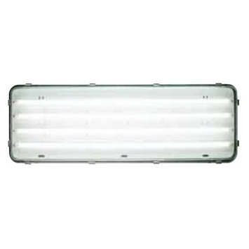 J & D Manufacturing J;D Manufacturing- LEDA4-24NL Rotating T8 LED Lighting with Night Light, Clear 6000*K Tubes with Clear Lens,2x 4', 4 LED Tubes, 110-277 Volts, .65/.16 Amps