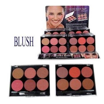 Cosmetics Makeup Blush Powder Bronzer + Brush 12 Colors 2 Palettes (BLUSH1 Z)