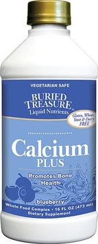Buried Treasure Calcium Plus Blueberry - 16 fl oz - HSG-165670