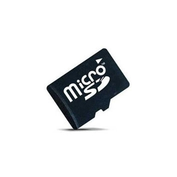 Intermec Technologies Corporation Intermec 1GB microSD Card 856-065-004