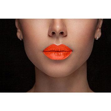 Glamorous Chicks Cosmetics - Too wild Full Coverage and Long Lasting Creame Matte Liquid lipsticks