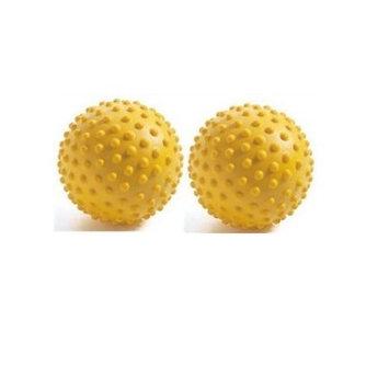 Ball Dynamics Fitball Sensory Ball 3.94 (Set of 2)
