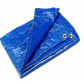 Cwc Regular-Duty Tarp, Blue