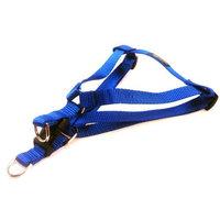 Sassy Dog Wear - Nylon Webbing Dog Harness