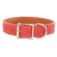 Auburn Leathercrafters Tuscany Leather Dog Collar