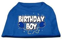 Ahi Birthday Boy Screen Print Shirts Blue Med (12)