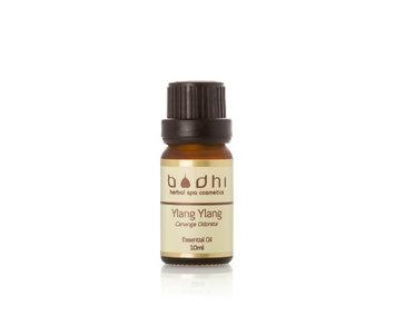 BODHI Pure Ylang Ylang Essential Oil, 0.3 fl. oz.