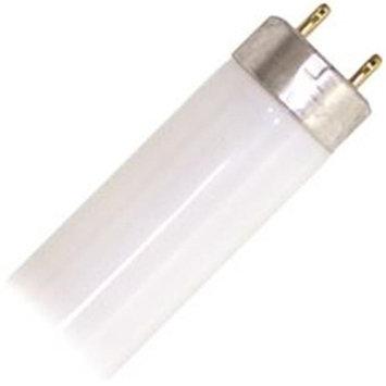 Sylvania 22451 - FO32/25W/850/XV/SS/ECO Straight T8 Fluorescent Tube Light Bulb
