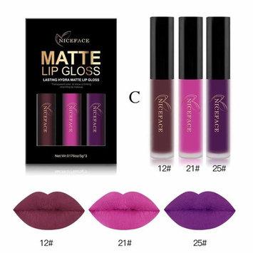Waterproof Matte Liquid,Datework 3PCS New Fashion Lipstick Cosmetic Sexy Lip Gloss Kit