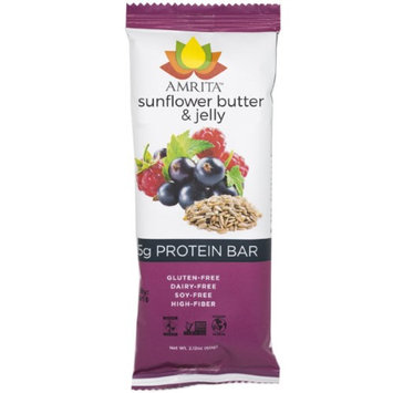 Amrita Health Foods Paleo Sunflower Butter and Jelly High Protein Bars - Gluten-Free, Dairy-Free, Non-GMO Certified - Vegan, Raw, Kosher - Kids Safe Snack - Clean Fuel for Athletes - Pack of 12 by Amrita