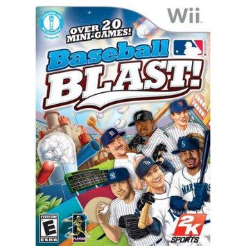 Take 2 Baseball Blast! (Nintendo Wii)