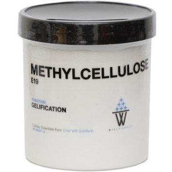WillPowder Methylcellulose E19, 16-Ounce
