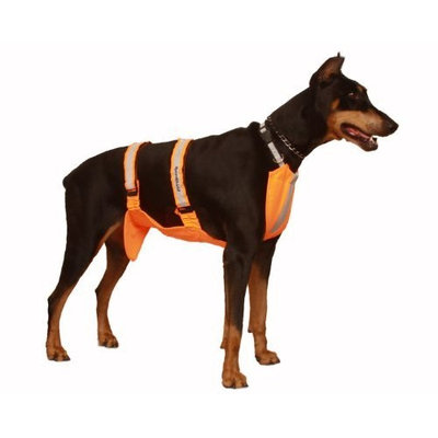 Sammy Doo Sport Shield Bright Orange Pet Hunting Hiking Walking Vest