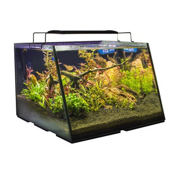 Lifegard Aquatics Lifegard Full-View 5 Gallon Aquarium with LED Light, Submersible Filter, 100 Watt Preset Heater, Magnetic Algae Scrub Brush, LED Thermometer, and Net