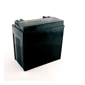 YTX14L-BS Motorcycle Battery for Harley-Davidson 1200cc XL XLH Sportster 2006