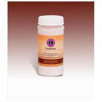 Evolution Salt EGSFG-500 1.1 lb Gourmet Crystal Salt Fine Grind