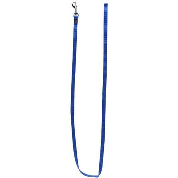 Dogit Nylon Single Ply Training Dog Leash, Large, Blue