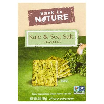 Back To Nature Foods Co., Llc Back To Nature, Crckrs Kale SeaSalt, 6.5 Oz (Pack Of 6)