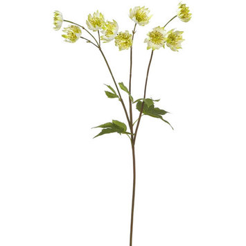 Summer Collection 24-inch, Green Astrantia Stem (Pack of 12)
