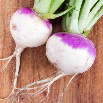 Mountain Valley Seed Company Rutabaga Seeds - American Purple Top: 4 Oz - Non-GMO Vegetable Gardening & Microgreens Growing Seeds
