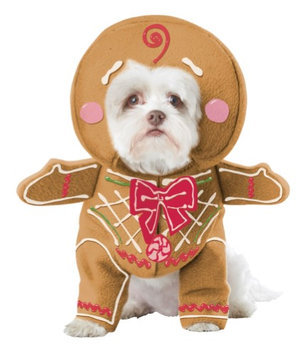 California Costume Collections Gingerbread Pup Dog costume