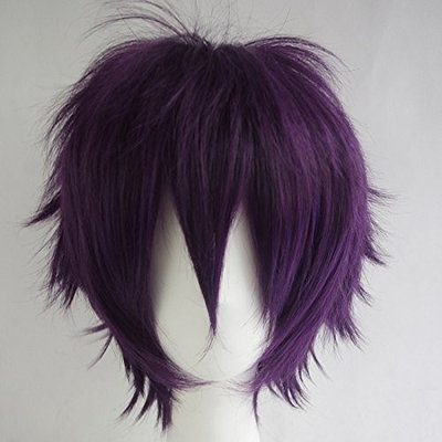 Max Beauty Unisex Short Straight Anime Wig Full Wigs Work for Cosplay,Dress Party,Daily Use,Halloween,Christmas Wig Nature Resistant Synthetic Fiber Wig 20 Colors (Dark purple)