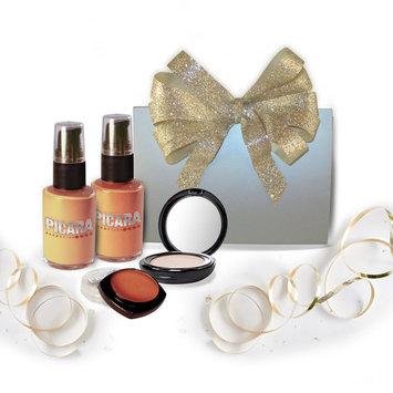 Picara Face It - Foundation, Powder and Blush Kit