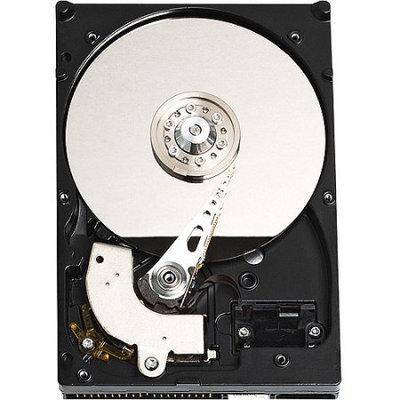Western Digital Caviar Blue WDBAAV3200ENC-NRSN 320GB Internal Hard Drive