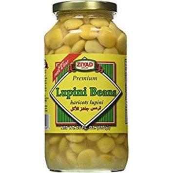 Ziyad, Lupini Beans (16 OZ, Pack - 3)