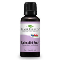 Plant Therapy Essential Oils Balm Mint Bush Essential Oil. 30 ml. 100% Pure, Undiluted, Therapeutic Grade.