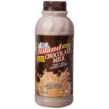 Hiland Chocolate Milk, 16 fl oz