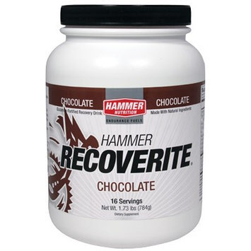 Hammer Nutrition Recoverite Recovery Drink Mix - 16 Servings Flavor Chocolate