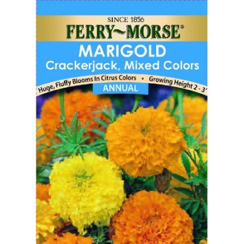 Ferry-morse Ferry Morse Flower Seed