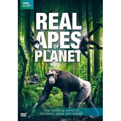 Bbc Home Entertainment Real Apes Of The Planet DVD (Standard Screen; Soundtrack English)