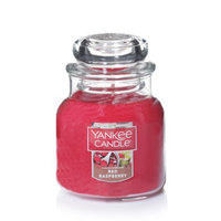 Newell Brands Yankee Candle Small Jar Candle, Red Raspberry