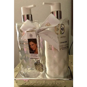 Daisy Fuentes Luscious Lavender Scented Hand Wash 16.9 fl oz and Hand Lotion 16.9 fl oz Gift Set in Tray