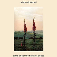 Climb Sheer The Fields Of Peace (IMPORT)