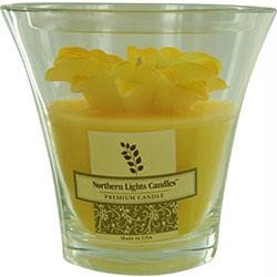 Daisy Garden Scented By Daisy Garden Scented YELLOW DAISY FLOWER VASE CANDLE - ONE 5.3x5 inch FLARED GLASS VASE WITH FLOWER. BURNS UP TO 90 HRS.