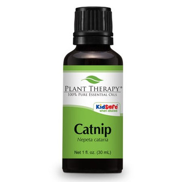 Catnip Essential Oil. 30 ml (1 oz). 100% Pure, Undiluted, Therapeutic Grade.