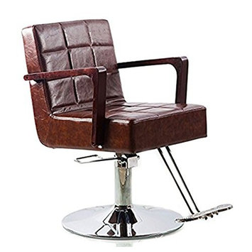 Funnylife Brown Styling Salon Beauty Barber Chair