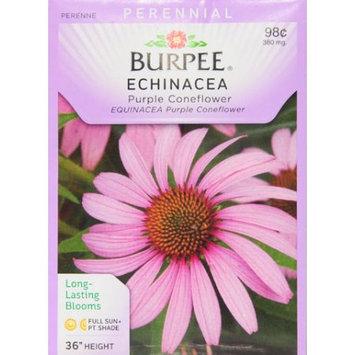 Burpee-Echinacea, Purple Coneflower Seed Packet