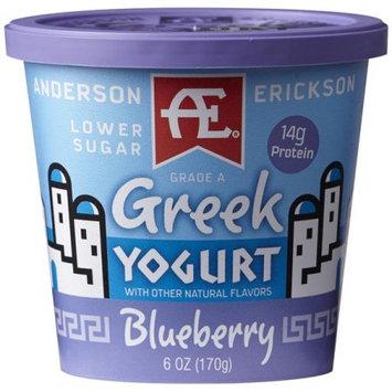 Anderson Erickson Dairy AE BLUEBERRY GREEK YOGURT