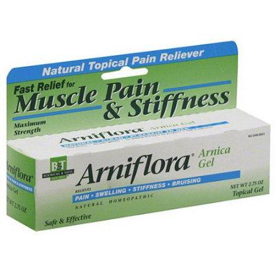 Nature's Way Boericke & Tafel Arniflora Muscle Pain & Stiffness Reliever Arnica Topical Gel, 2.75 oz