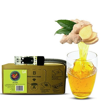 Irish Style Craft Ginger Ale (3 Gallon Bag-in-Box Syrup Concentrate) - Box Pours 18 Gallons of Ginger Ale - Use with Bar Gun, Soda Fountain or SodaStream